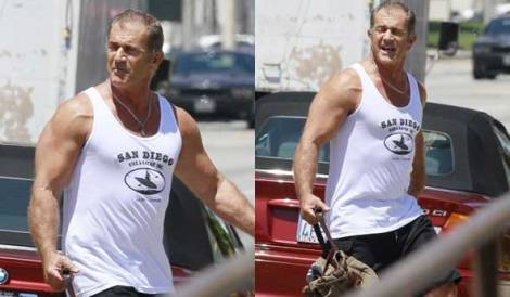 Yes, This is Arms Gibson…I mean, Mel Gibson.